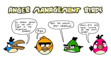 Anger Management Birds